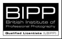 BIPP Logo